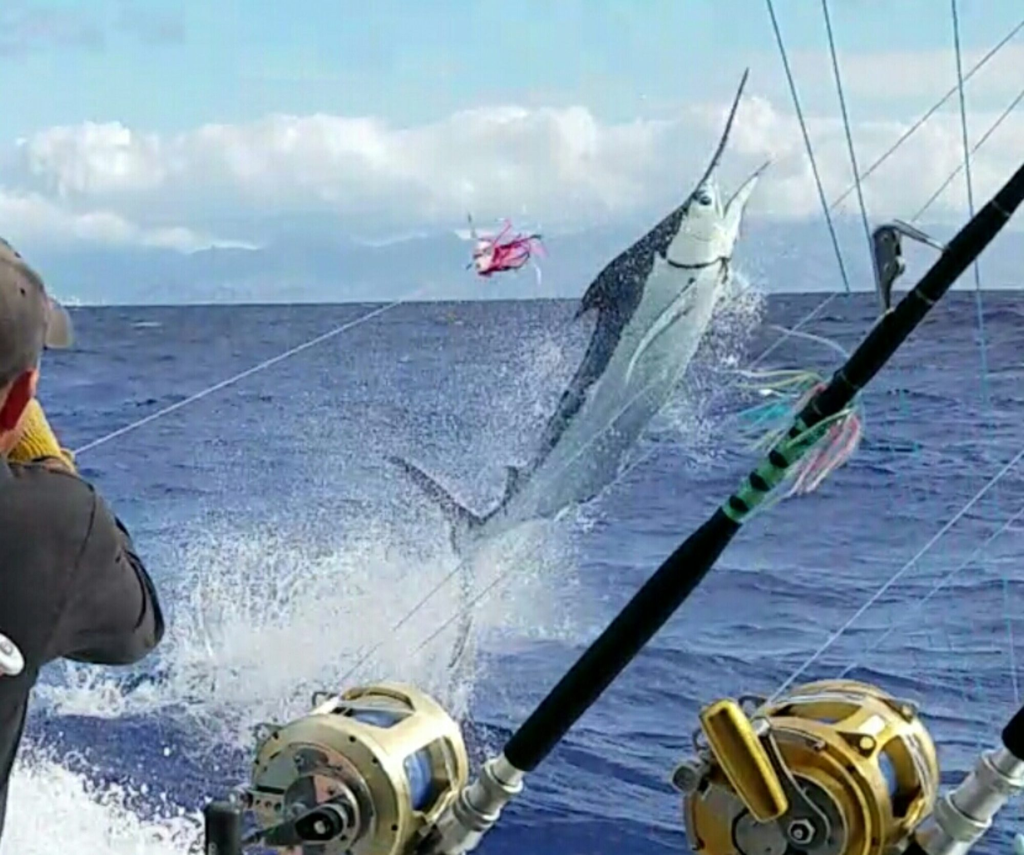 oahu deepsea fishing call us today 808 938 1111